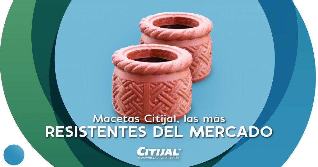 Macetas Citijal, las más resistentes del mercado